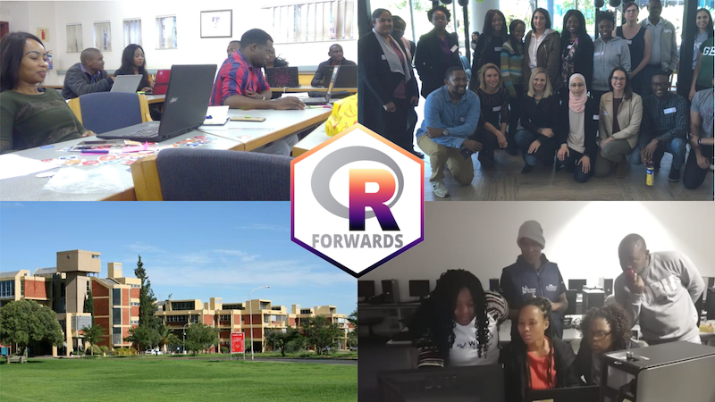 Building the R Community in Southern Africa